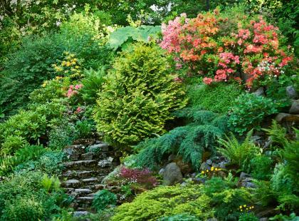 Jakie elementy mają niekorzystny wpływ na harmonię w ogrodzie?