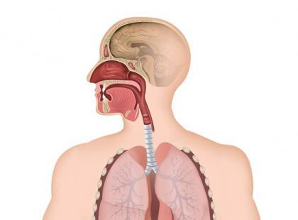 Jakie jest stężenie pyłu PM2,5 w powietrzu, którym oddychasz?
