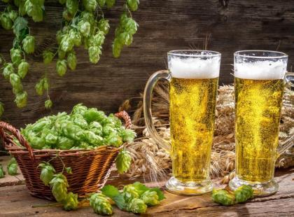 Jakie piwa wybierają Polacy?