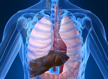 Jakie przeciwciała są charakterystyczne dla wirusowego zapalenia wątroby?