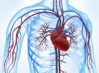 Jakie są rodzaje stymulatorów serca?