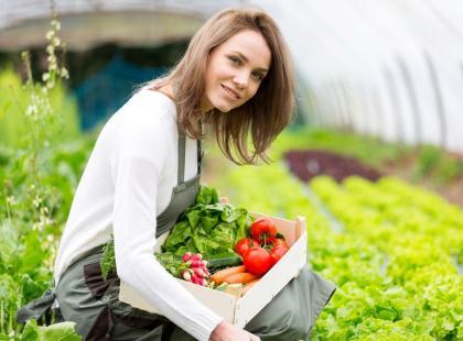 Jakie warzywa można wyhodować z... resztek? Poznaj 7 gatunków!