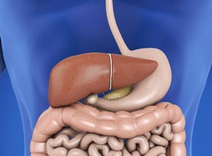 Jakie zaburzenia w organizmie powoduje przerost drożdżaków?
