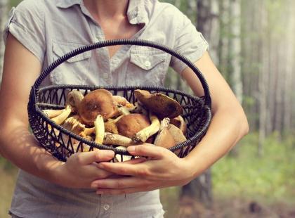 Jedz grzyby, będziesz zdrowa!