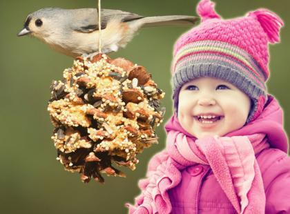 Karmnik dla ptaków z szyszki - DIY