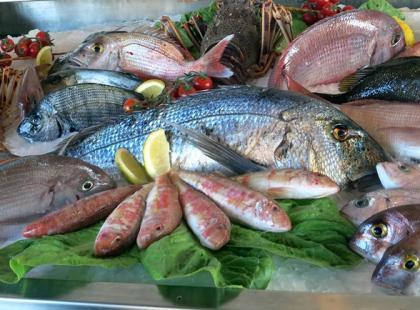 Kiedy dzieci mogą jeść ryby?