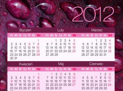 Kobiece kalendarze na 2012 rok - wydrukuj za darmo!