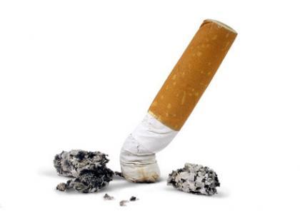 Kosztorys dla palacza