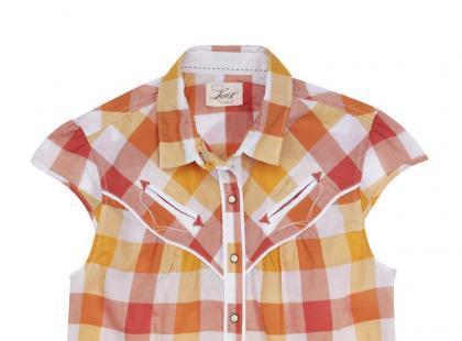 Koszule, sweterki i bluzy z damskiej kolekcji Levis - wiosna i lato 2011