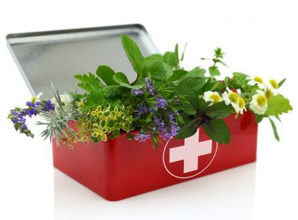 Które zioła obniżają ciśnienie krwi?
