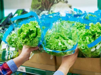 Kupujesz paczkowane sałaty? Uwaga! Znaleziono w nich groźne bakterie