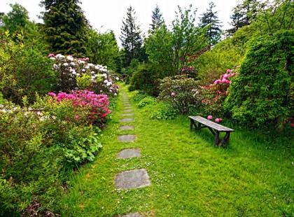 Kwiaty do ogrodu w 4-ech kolorach!