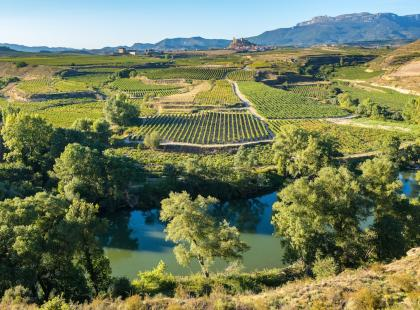 La Rioja. Odpoczynek wśród winnic
