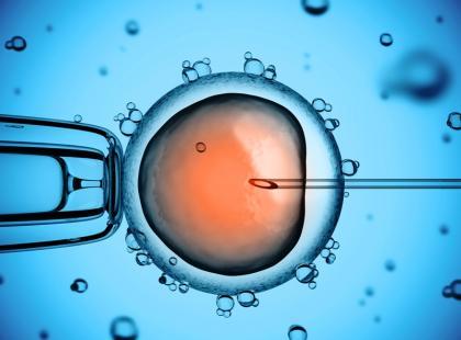 Leczenie niepłodności - rządowy program in vitro