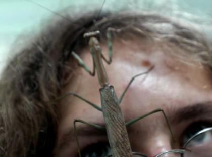 Lęk przed robakami - jak nad nim  zapanować?