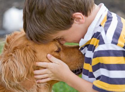Lęk separacyjny u psa ze schroniska
