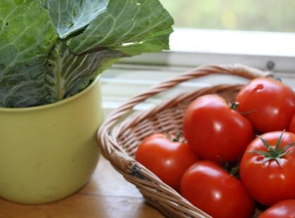 Bez względu na odmianę, pomidory obiera się w podobny sposób