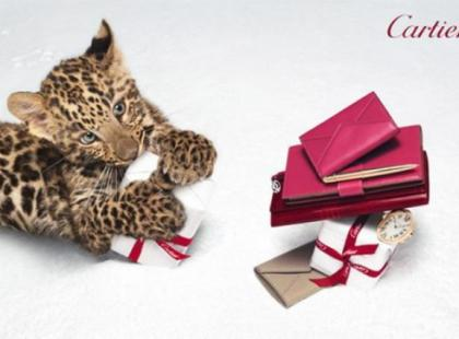 Mała pantera twarzą świątecznej kampanii Cartier
