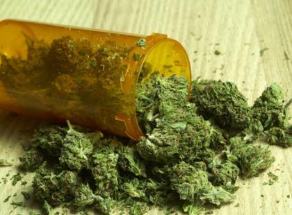 Marihuana – narkotyk czy lekarstwo?