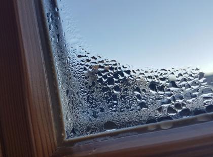 Masz wilgoć w domu, w garażu lub w samochodzie? Pomyśl o pochłaniaczu wilgoci