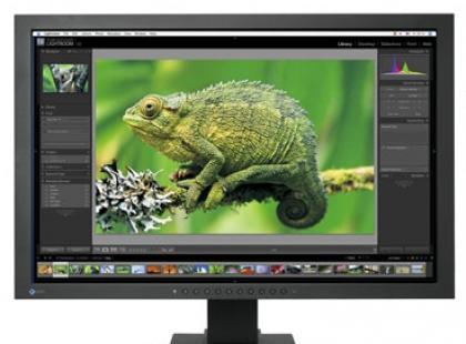Monitory dla fotografów