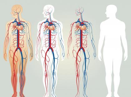 Morfologia krwi - jak odczytać wynik?