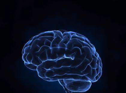 Mózg potrzebuje energii – jak go odżywić?