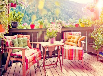 Najlepsze kwiaty na balkon