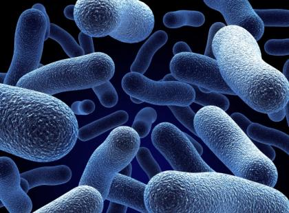 Nanomateriały w zwalczaniu bakterii