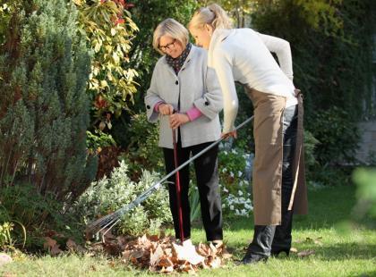 Naprawiamy trawnik