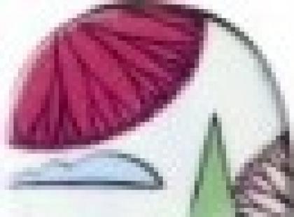 Narty - przegląd kobiecych linii na sezon 2011/2012