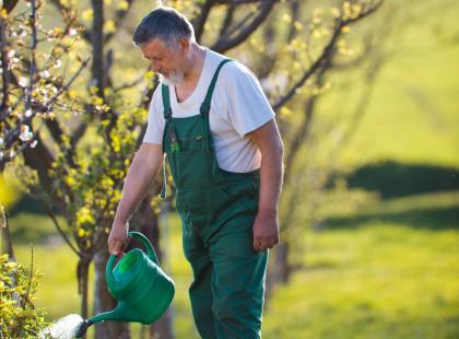 Naturalne opryski przeciw szkodnikom i chorobom roślin
