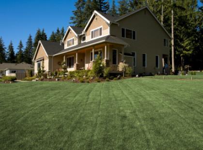 Nawożenie i uzdatnianie gleby