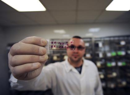 Nowy antyonkogen ułatwi wykrywanie ludzi podatnych na raka skóry