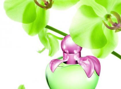 Nowy zapach Nina Ricci – Love by Nina