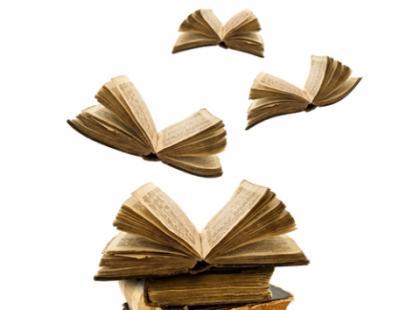 Nurt plebejski i mieszczański w literaturze