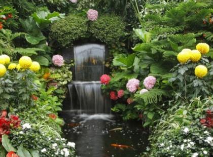 O czym należy pamiętać projektując ogród?