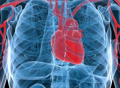 Objawy sercowo-naczyniowe w przebiegu tocznia układowego