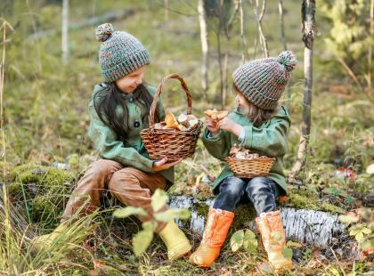 Od kiedy dzieci mogą jeść grzyby? Czy w ogóle powinny? Sprawdź!