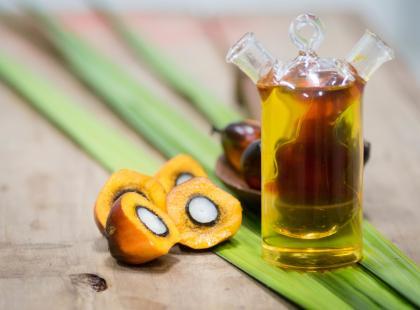 Olej palmowy – czy rzeczywiście jest aż tak szkodliwy? Tylko fakty!