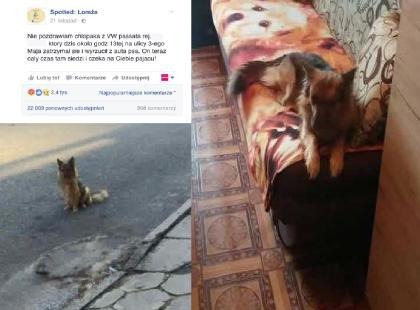 """""""On teraz tam siedzi i czeka na ciebie, pajacu"""". Zostawił psa na ulicy, a internauci go namierzyli!"""