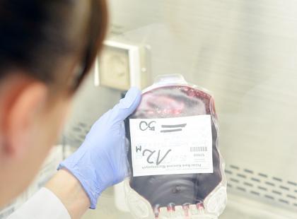 Otwarto największe w Europie Środkowej laboratorium do preparowania krwi pępowinowej
