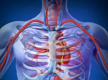 Pacjent z cukrzycą ma zwiększone ryzyko problemów kardiologicznych