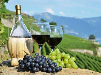 Peruwiańskie wina - przepis na pisco
