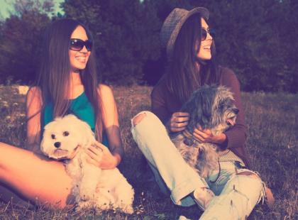 Pies pomaga w zawieraniu znajomości