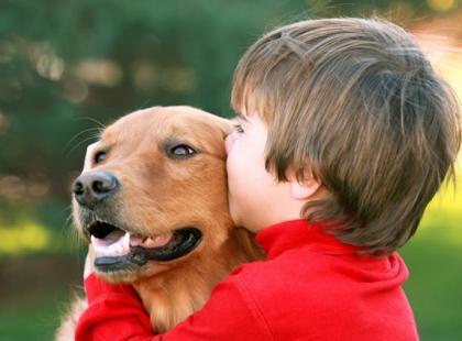 Pies reaguje agresywnie w stosunku do dziecka - co robić?