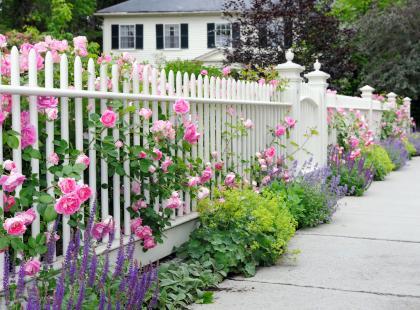 Planujesz ogrodzenie posesji? Pomożemy ci wybrać najlepsze rozwiązanie