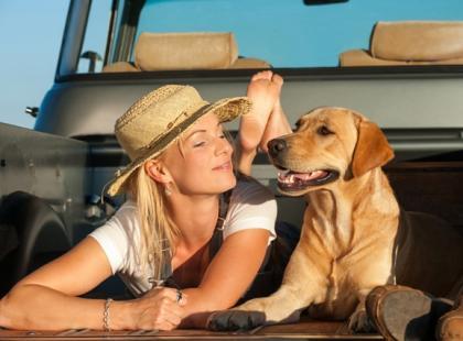 Podróż z psem - przygotowanie