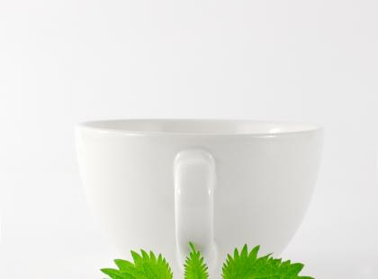 Każdy z nas, choć często nawet nie zdaje sobie z tego sprawy, spożywa zioła niemal codziennie, w postaci nieprzetworzonej lub jako składniki wielu produktów użytkowych