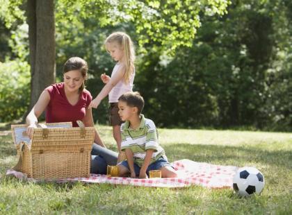 Pora na piknik
